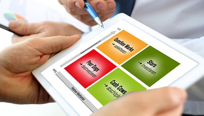Portfolio Analysen Kundenbefragung