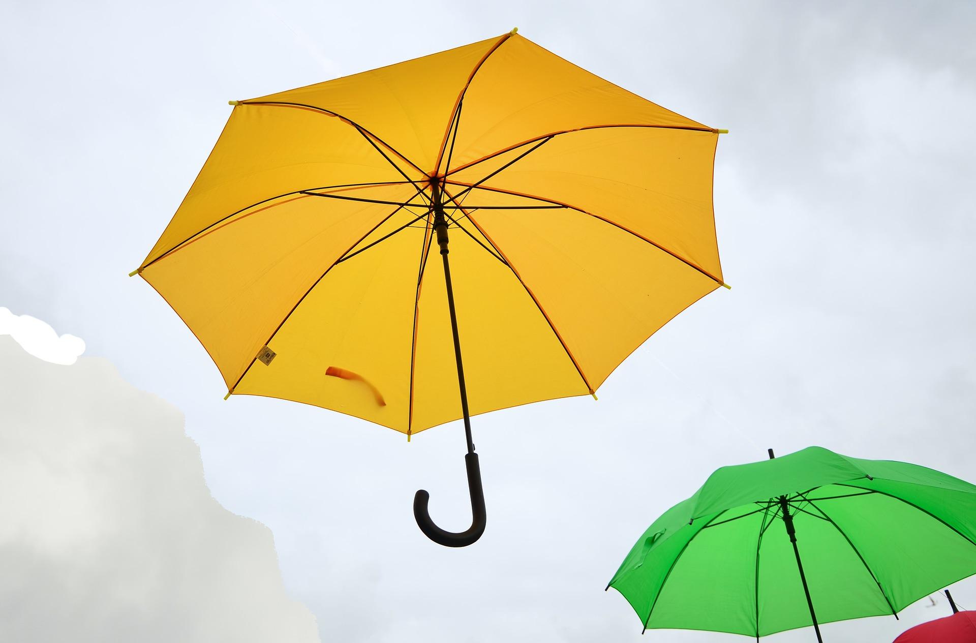 Themenfokussierte Mitarbeiterbefragung Regenschirme