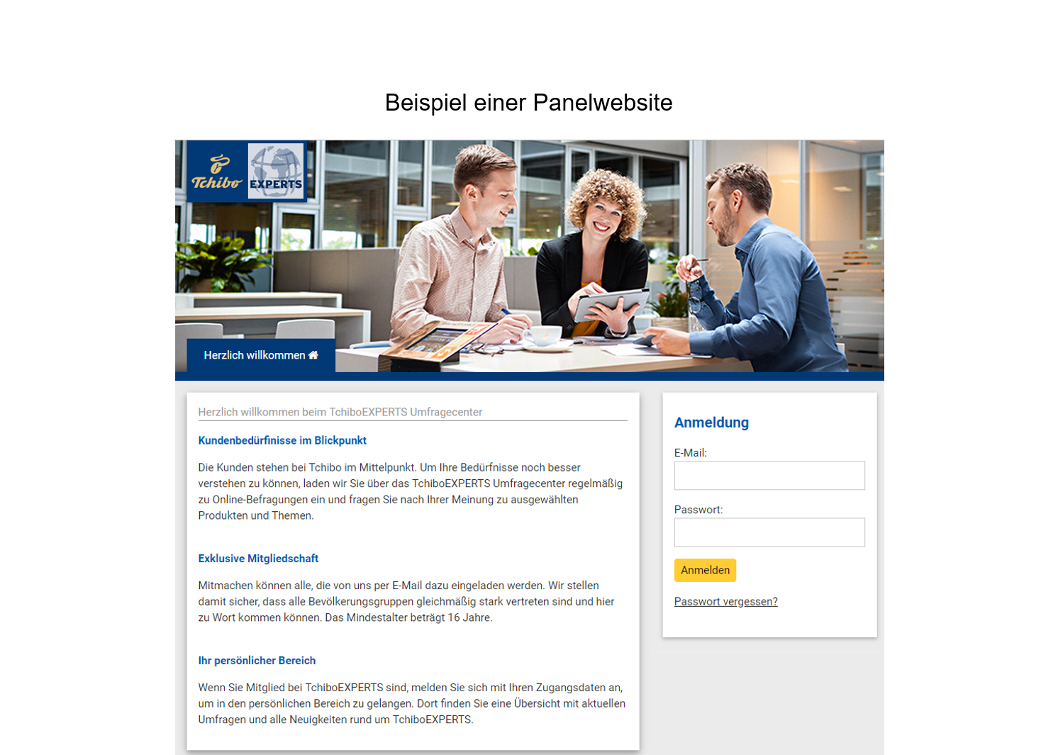 Beispiel Panelwebsite Tchibo