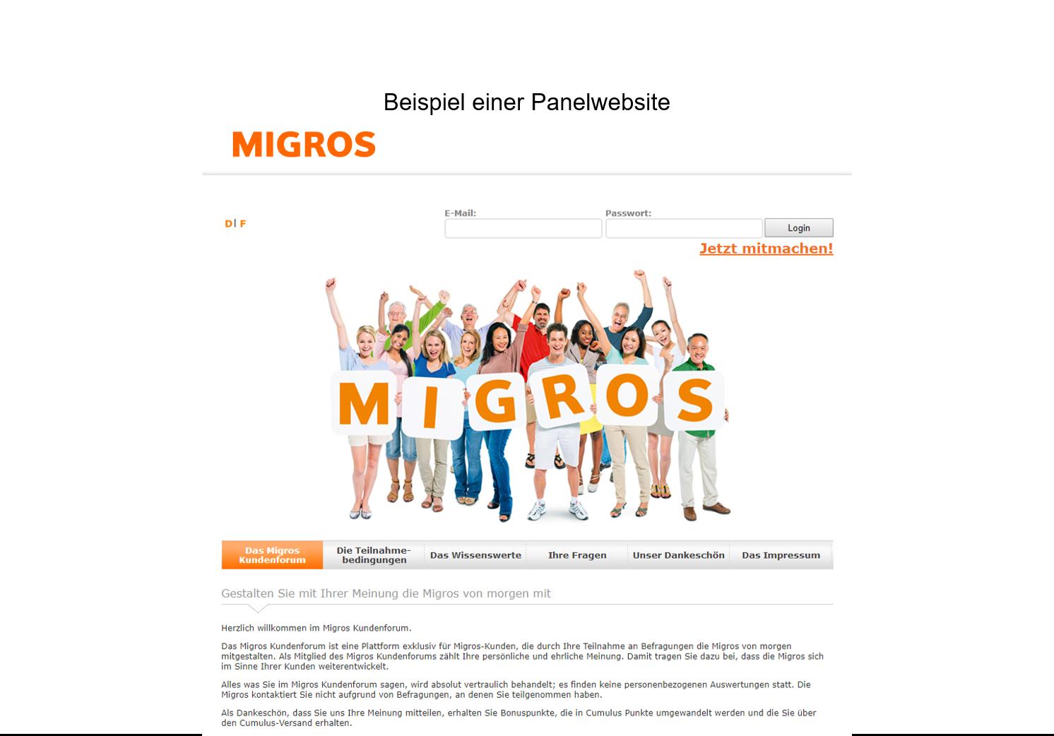 Beispiel Panelwebsite Migros
