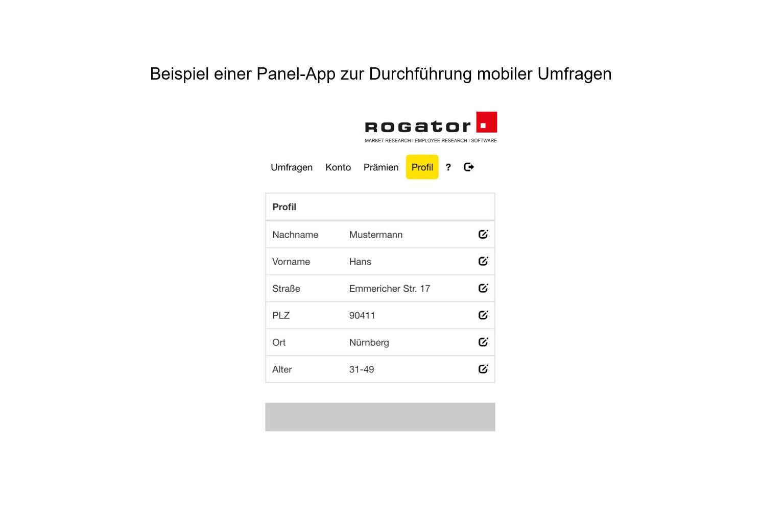 """Beispiel Panel App mobile Umfrage """"Profil"""""""