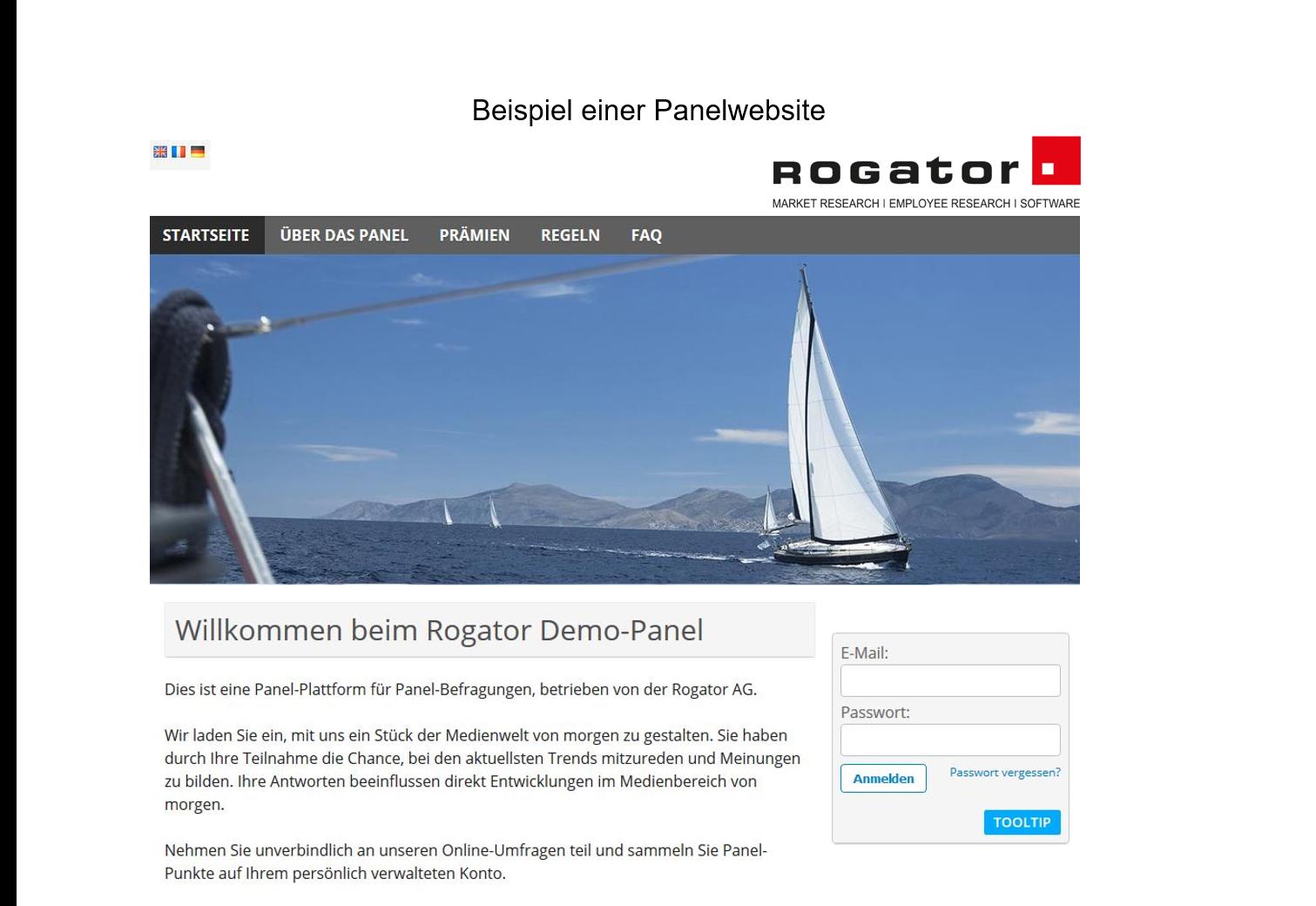 Beispiel Panelwebsite Rogator
