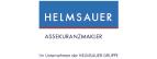 Logo Helmsauer