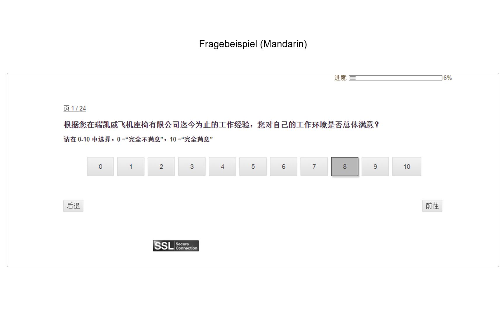 MAB international Fragebogenbeispiel Mandarin