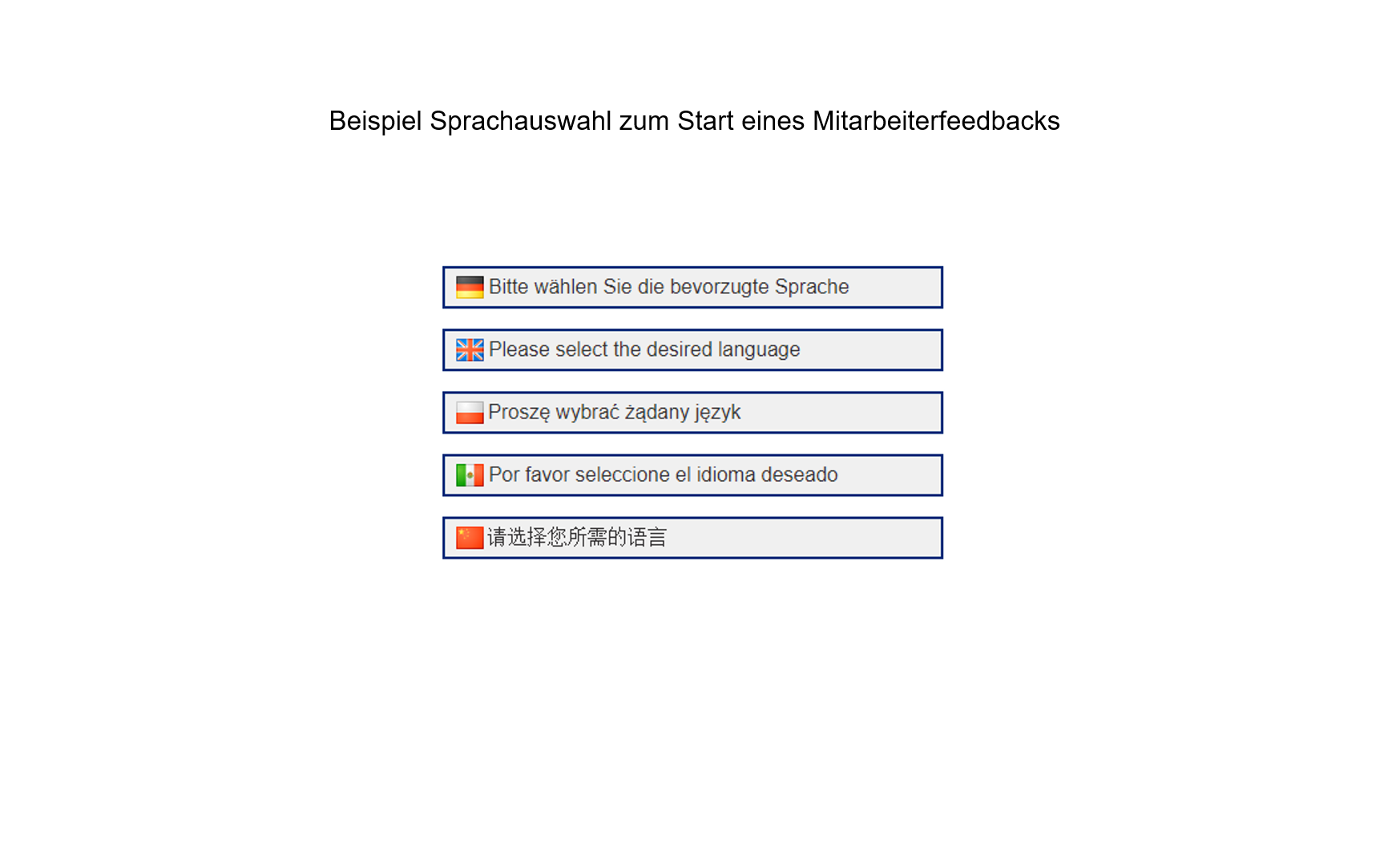 MAB international Sprachauswahl Fragebogen