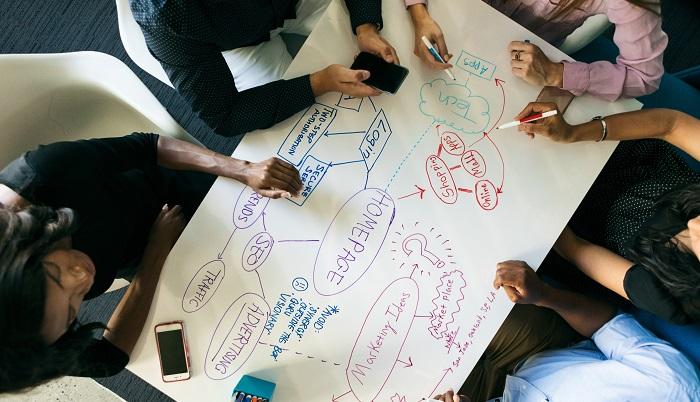 Team plant Websitegestaltung
